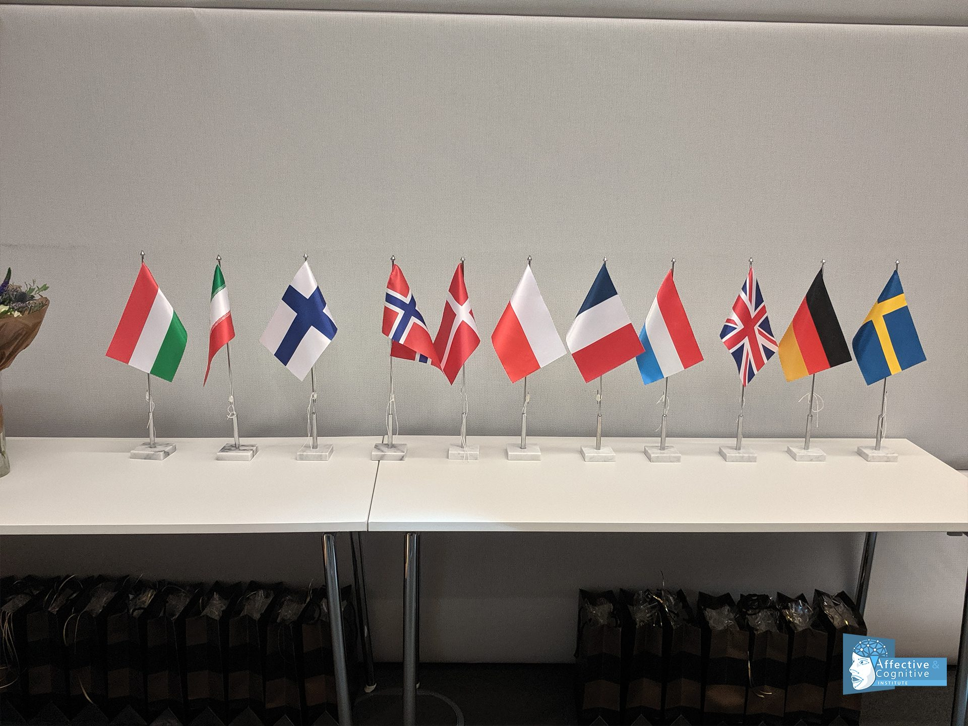 Flags of european countries at SUITCEYES Symposium 2019